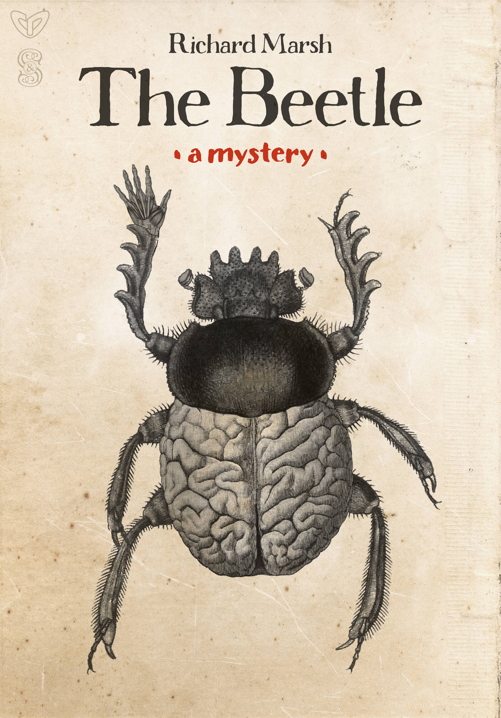 Beetle Marsh Front Cover